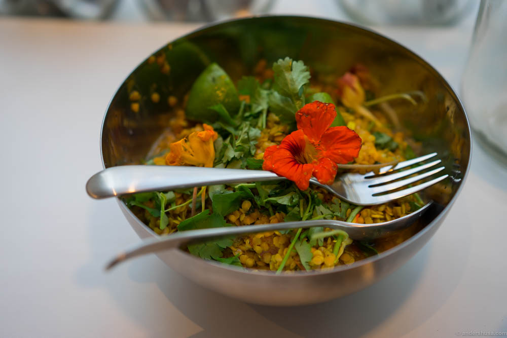 Lentils with turmeric, cloves, coriander, toasted black pepper, lime and nasturtium flowers