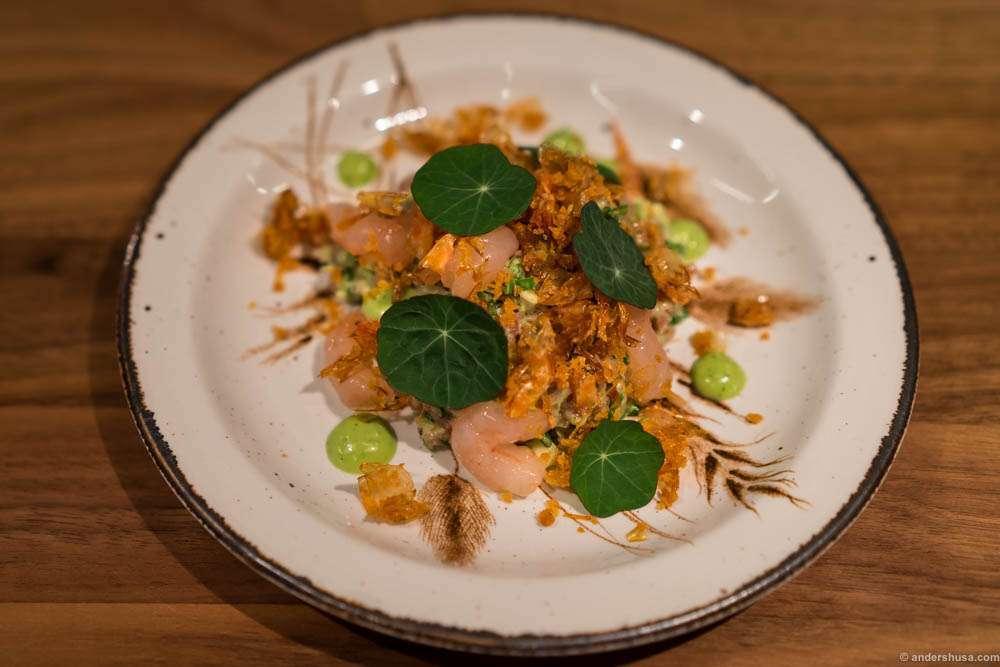 Tartare with raw shrimps and nasturtium