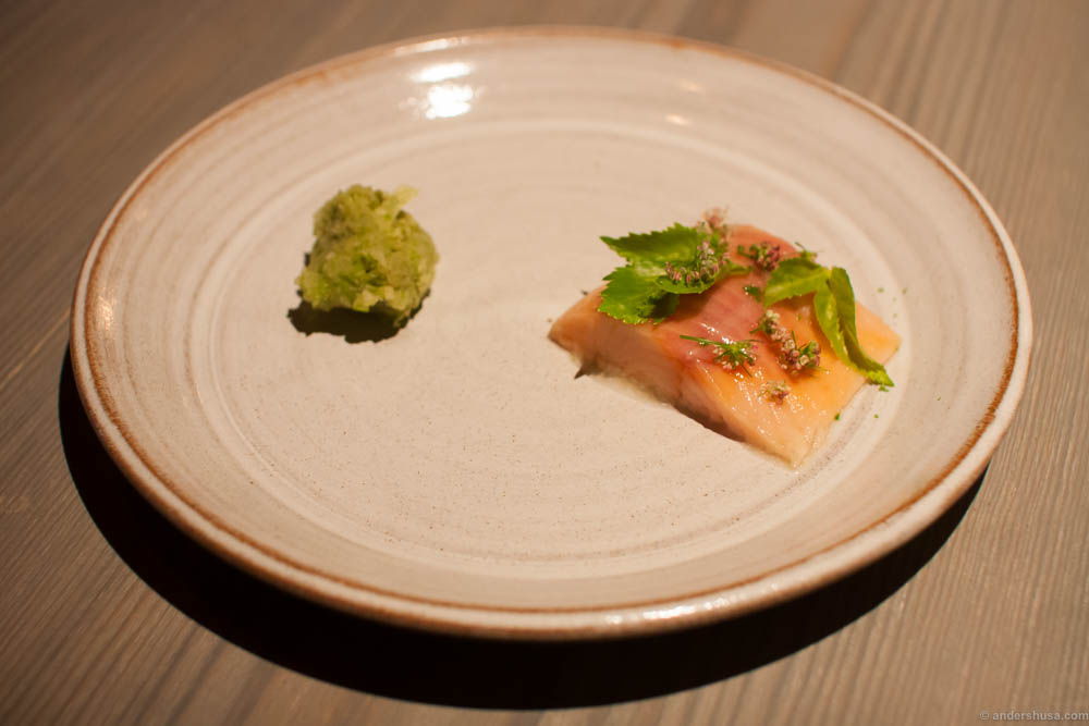 Smoked trout with a green apple cream made to look like wasabi. Riccardo had caught the fish himself the day before. The cream was kinda dull in flavor.
