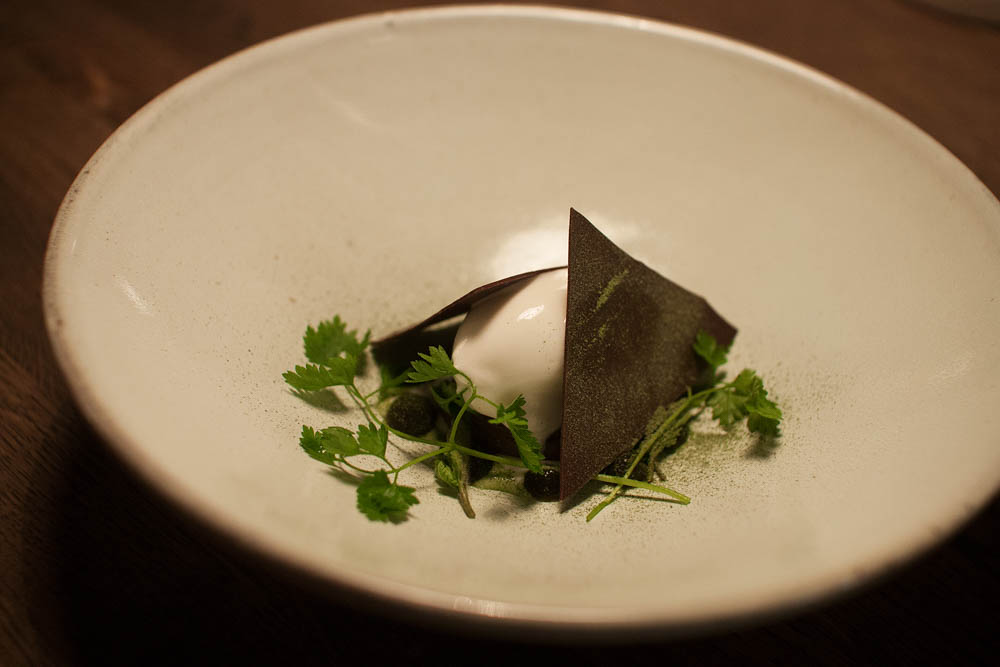 Sorbet of goat's milk yoghurt, salty caramel, organic chocolate, fresh chervil and chervil dust. The caramel was very tasty, but the sorbet was a bit bland. The chocolate didn't really add anything to the dish. The chervil, however, was interesting. Weird, but good.