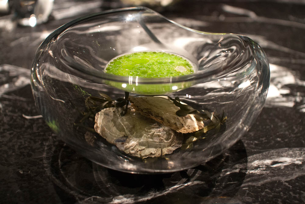 Emulsion of raw Norwegian oysters from Bømlo with a warm sauce made from mussels and dill