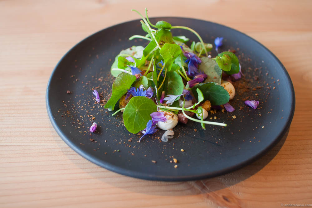 Veal tartare, horseradish cream, pickled shallots, bread crumbs, cress salad, nasturtium, and wild Bornholm cornflowers. I had this recommended by the producers of the ceramics, Lov i Listed, and it was a great tip!