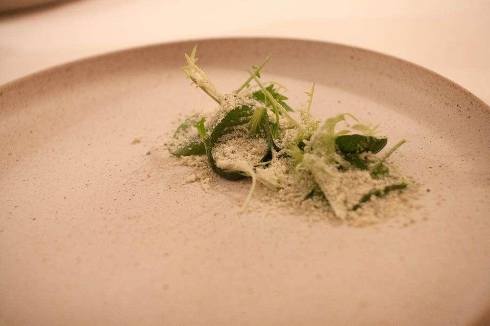 """Hitra Blå"" granulated, almond praline & bitter salad."