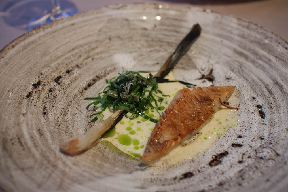 """""""Pike perch and ramsons"""". Smoked pike perch, a sauce flavored with ramson oil, spring onions and ramson flowers. Simple and very tasty"""
