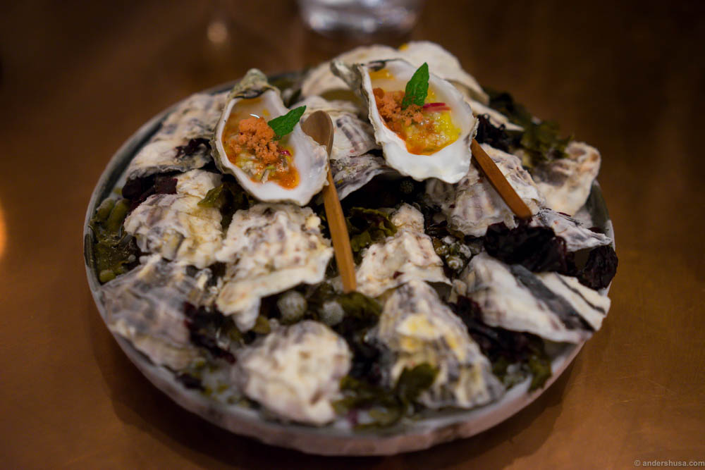 oysters with mango and angostura - Contemporary Restaurant 2015