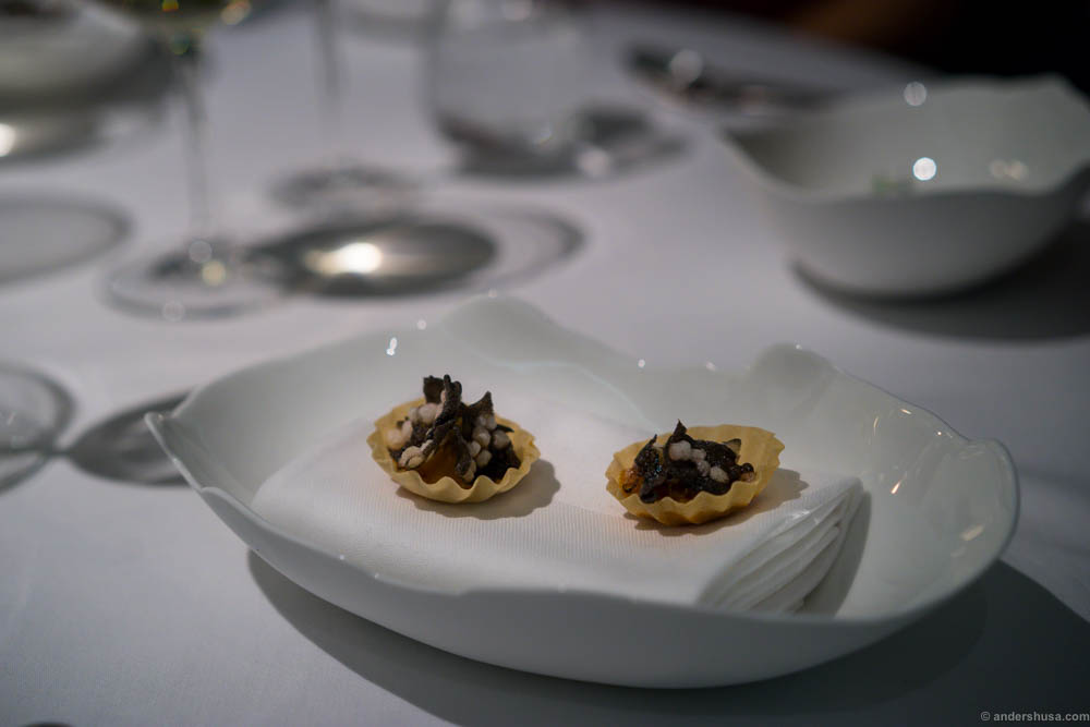 Sea urchin pies
