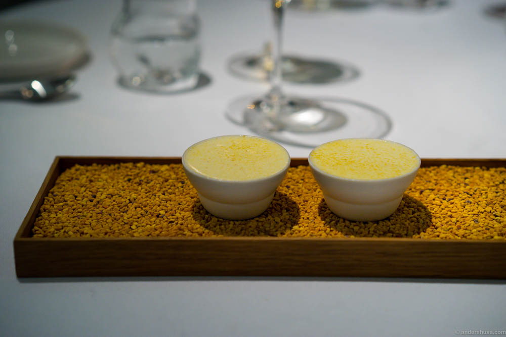 Ice cream from beeswax, pollen and honey with cloudberries