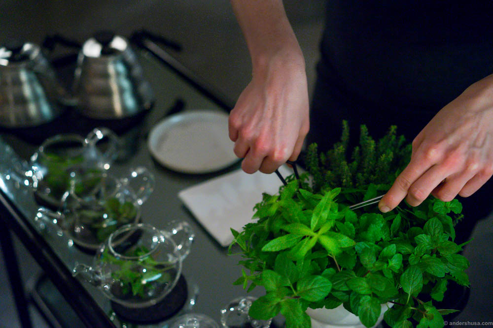 Time for tea. Helle cuts fresh herbs...