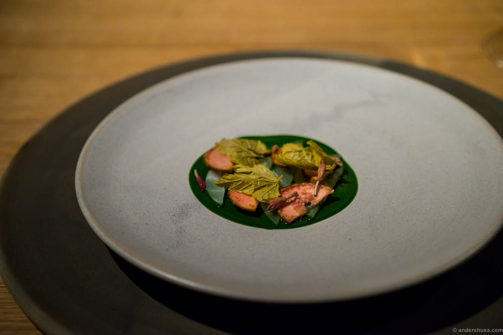 Blackcurrant leaves, wood sorrel and kohlrabi