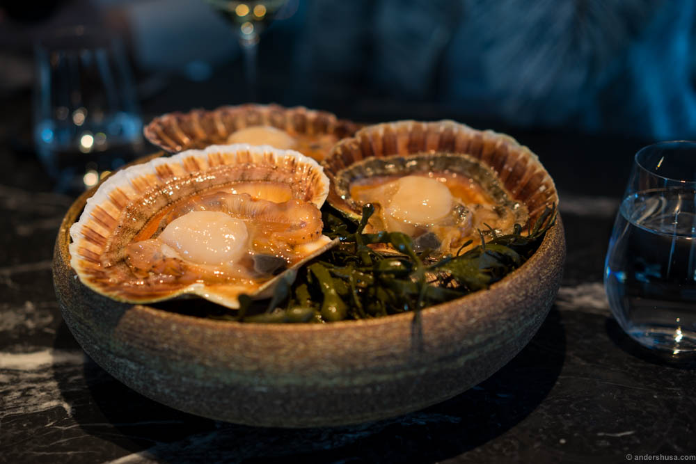 These huge fresh scallops were brought to our table before the kitchen prepared them for us