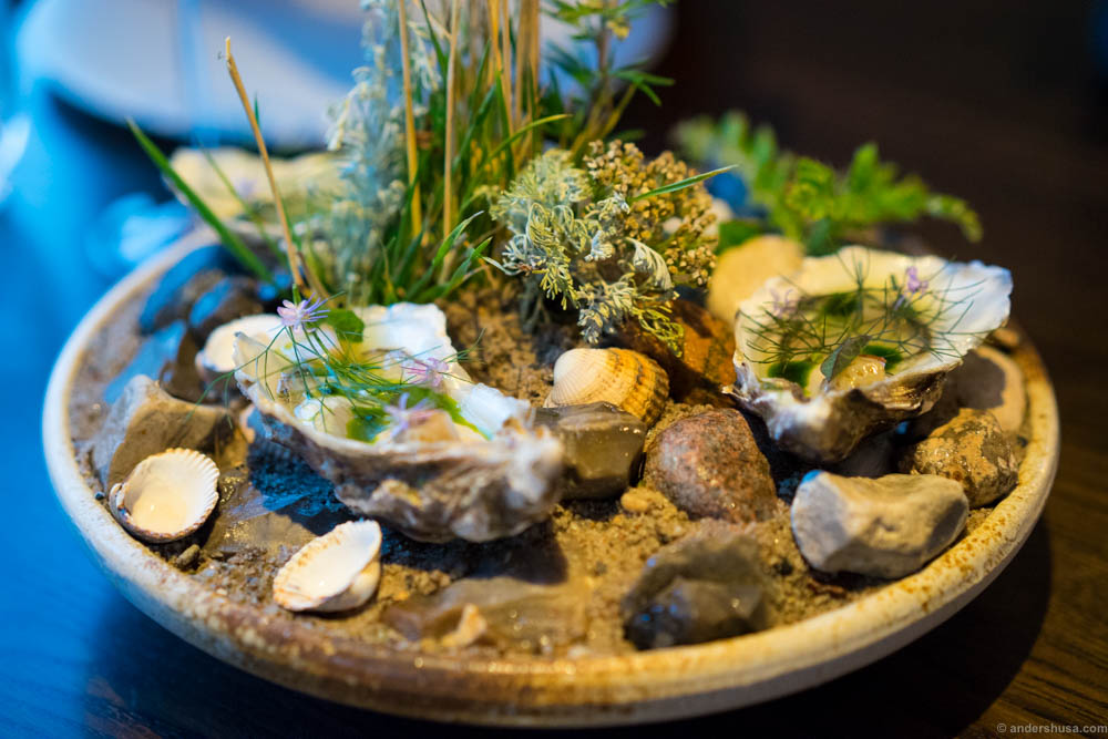 Oysters with green strawberries and dill