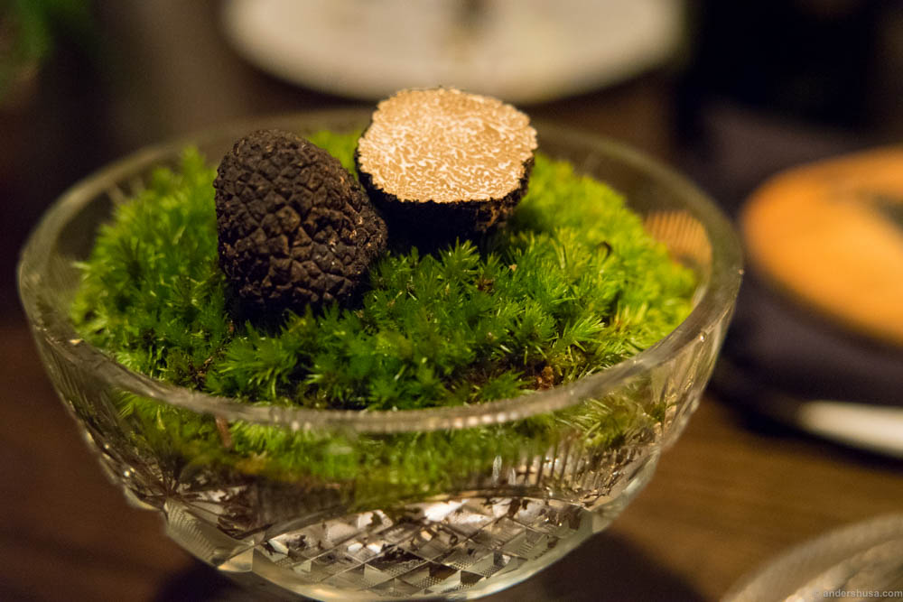 You can never have enough truffle in your life