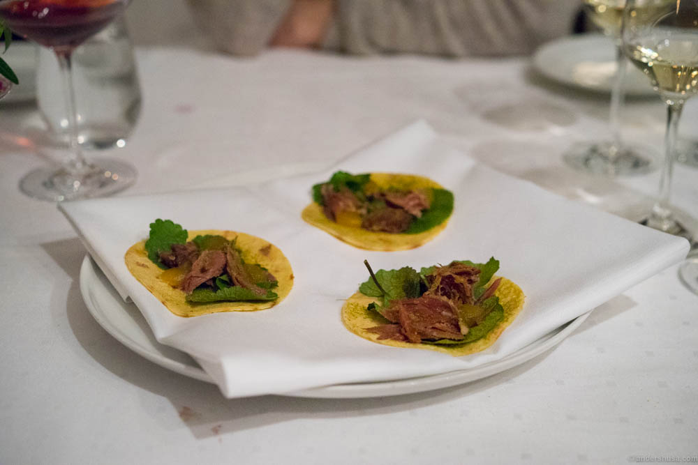 Potato tortillas with «smalahove» lamb's head, pickled turnip puree, onion cress and pine needle powder