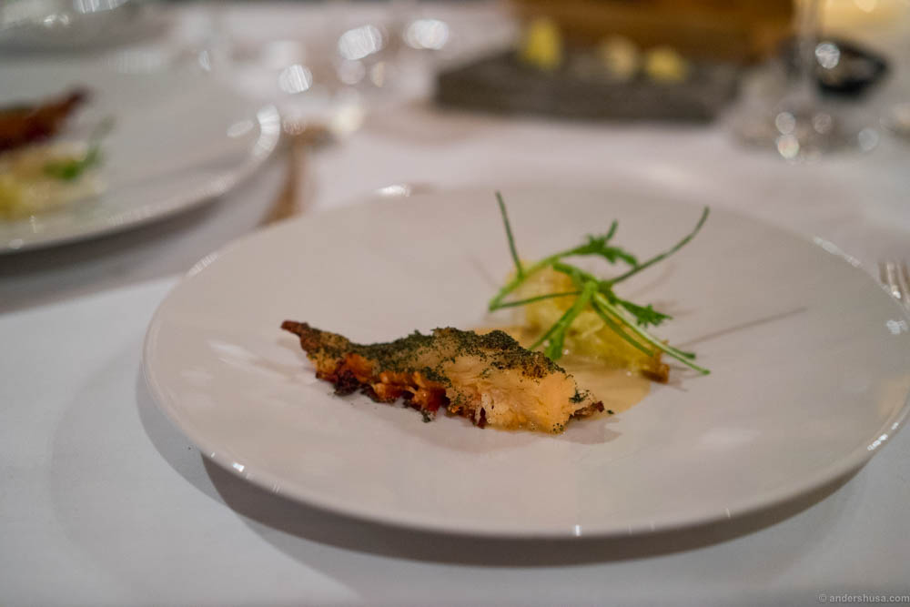 Lobster, curry, cabbage & verbena