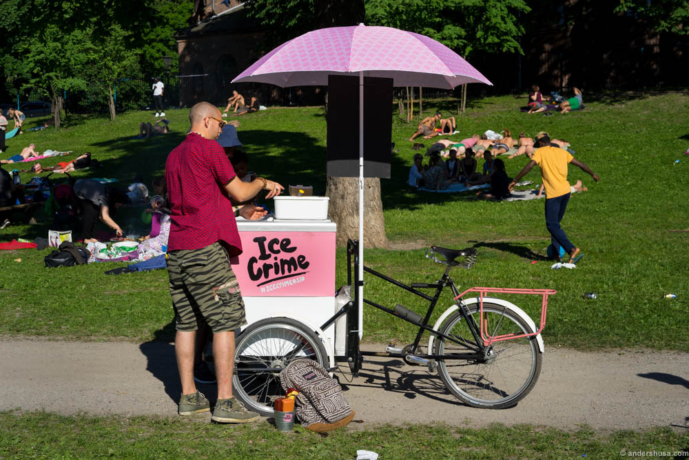 Ice Crime in Sofienbergparken