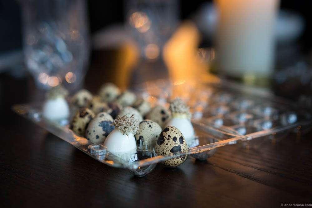 Studio snack 3: Quail egg and truffles
