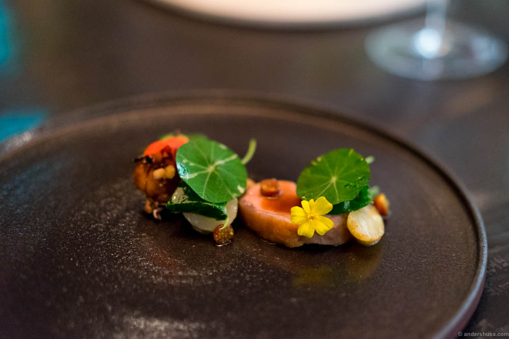 Lamb and lamb sweetbreads, potatoes from Hommersåk, puffed rice & nasturtium