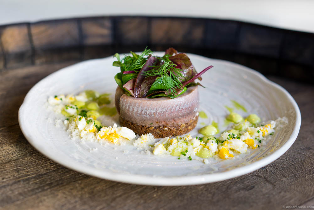 Matjes herring on rye bread with a filling of potato, apples and herring cutoffs. Dill emulsion, dill oil, Västerbotten cheese and boiled egg on the side