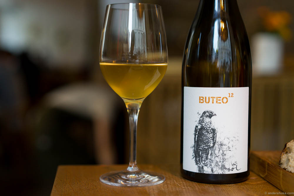 "Buteo 12, Grüner Veltliner of the ancient vineyard ""Sol"" by Michael Gindl"