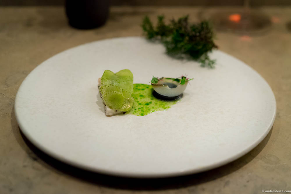 Turbot, grilled onions and green strawberries