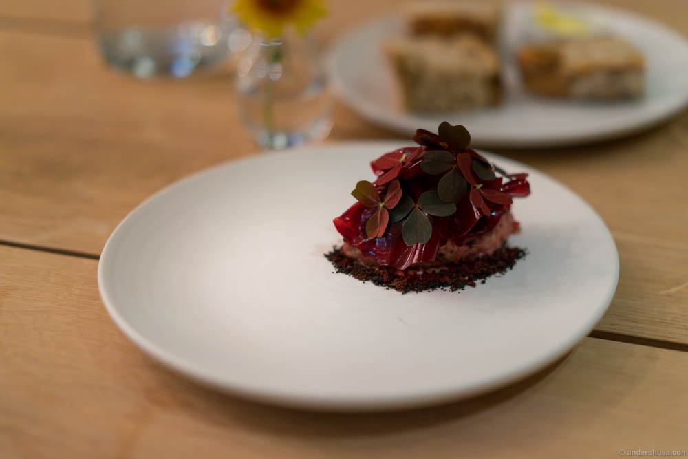 Axel's tartare with black garlic mayo, redbeets gel and red oxalis