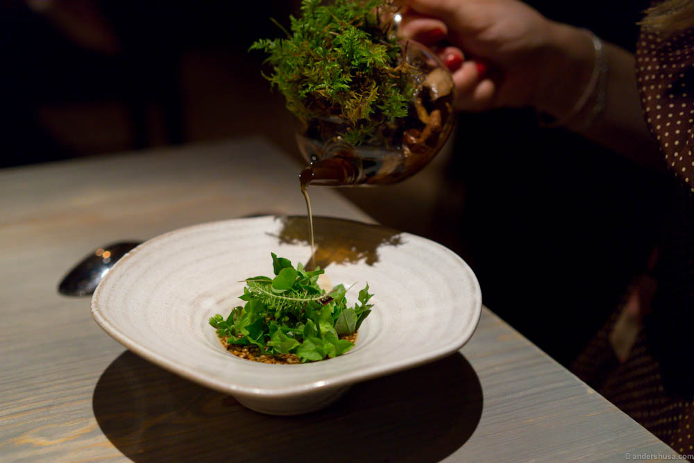 Porridge of grains and seeds from Jämtland finished with a big lump of salty butter, fermented carrot and wild leaves, meat broth filtered through moss