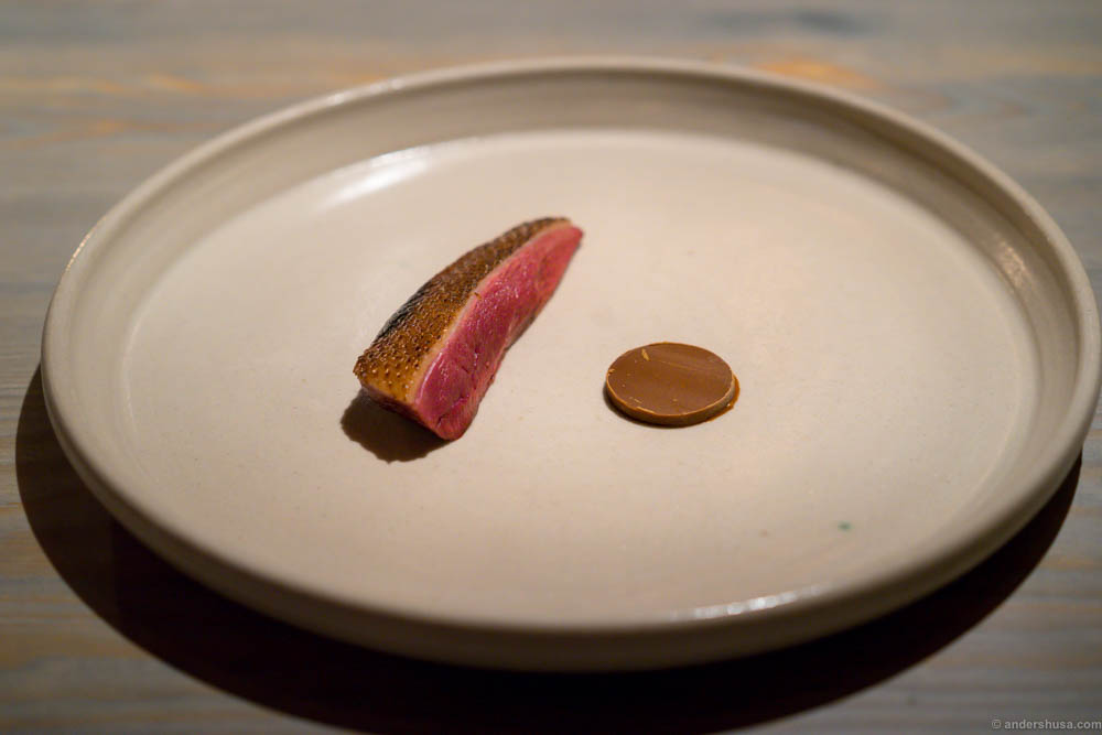 Duck with fermented, roasted and finely ground lupin bean