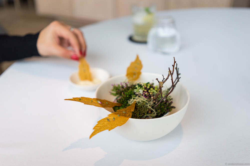 Jerusalem artichoke leaves, walnut oil & rye vinegar