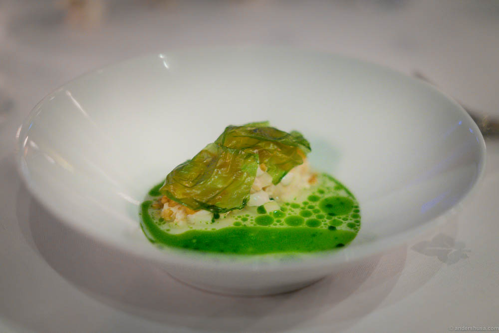 top-25-favorite-dishes-best-dish-course-plate-restaurant ...