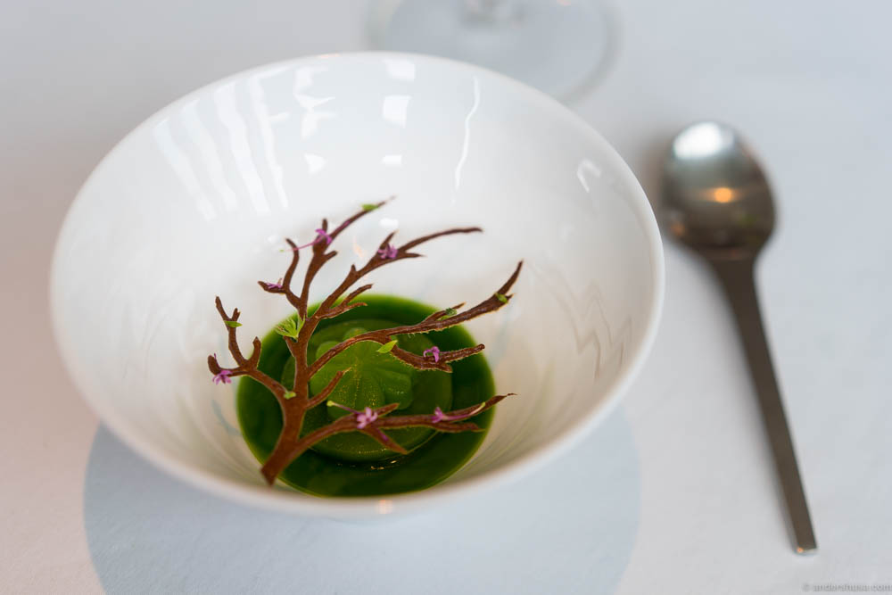 Wood sorrel & woodruff at restaurant Geranium in Copenhagen, Denmark