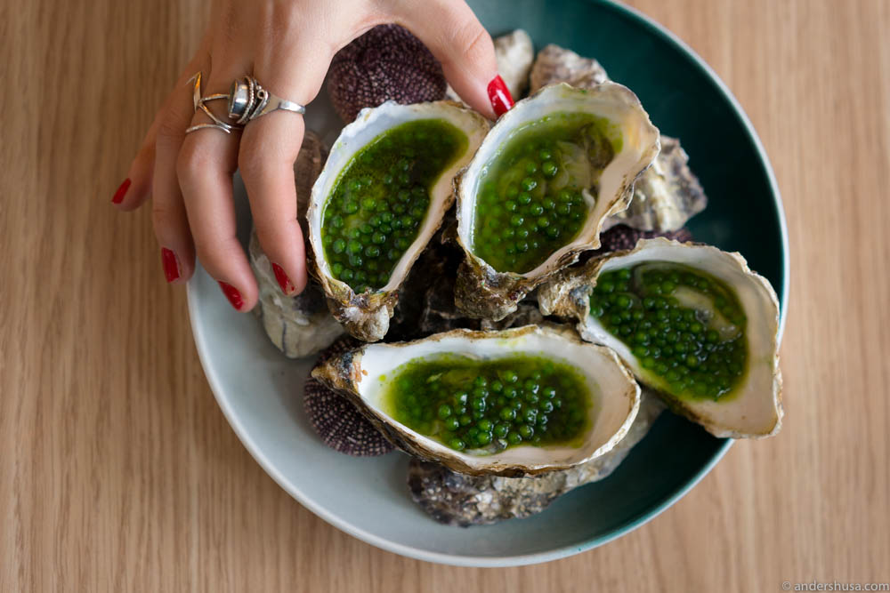Oysters with tapioca pearls, jalapenos, green tabasco, green tea & ponzu