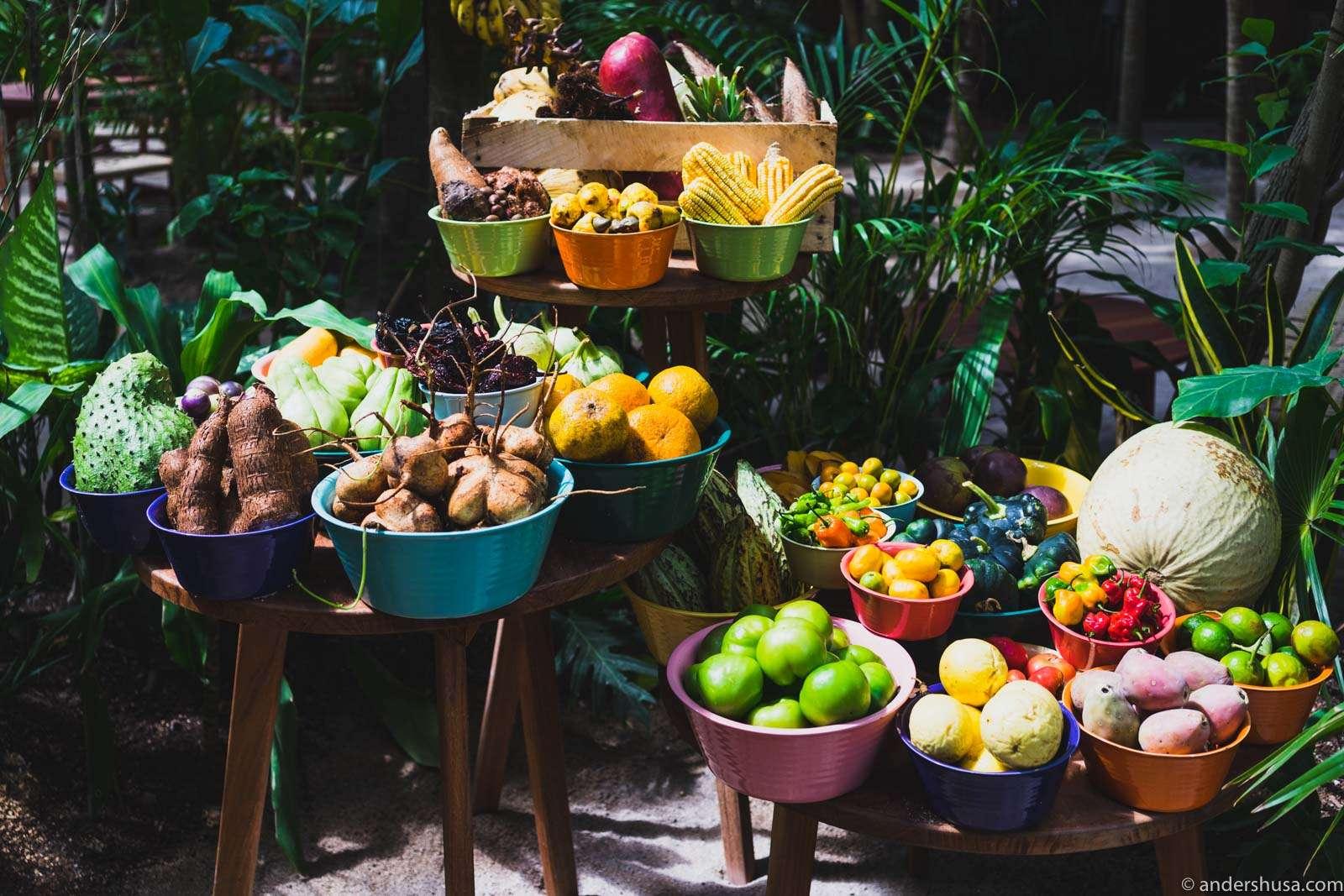 noma-mexico-tulum-rene-redzepi-popup-restaurant-review ...