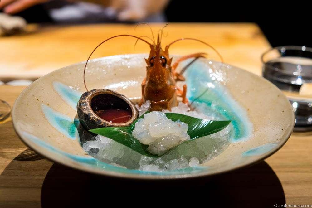 Langoustine sashimi with shoyu sauce