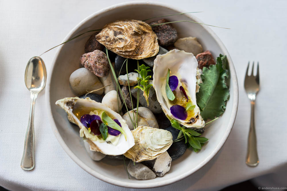 The oyster serving at Falsled Kro, with grapes, salty white currants, horseradish cream & flowers from the garden