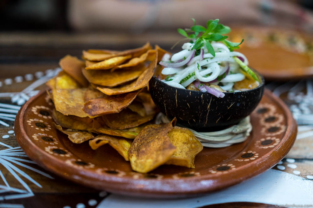 Coconut ceviche with crispy sweet potato chips
