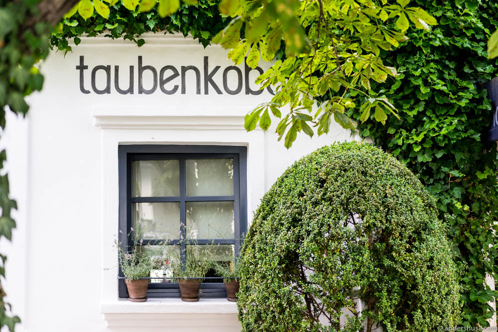 Welcome to Taubenkobel in Burgenland