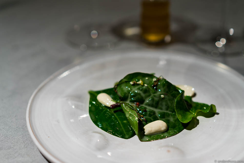 Spinach leaves, green almonds & sour cream