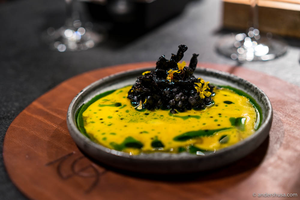 Squid porridge with vintage egg yolk & sauce of mussel juice and squid ink