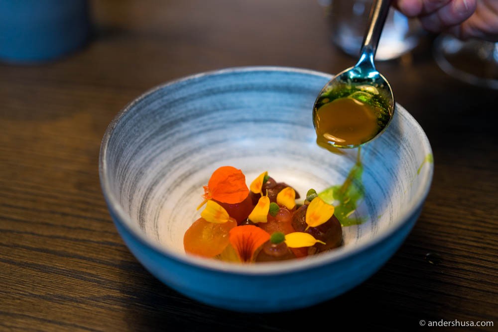 Tomatoes from Korsvold with pineappleweed, golden marigold, and a bouillon of grilled tomatoes, laurels, and golden marigold oil.