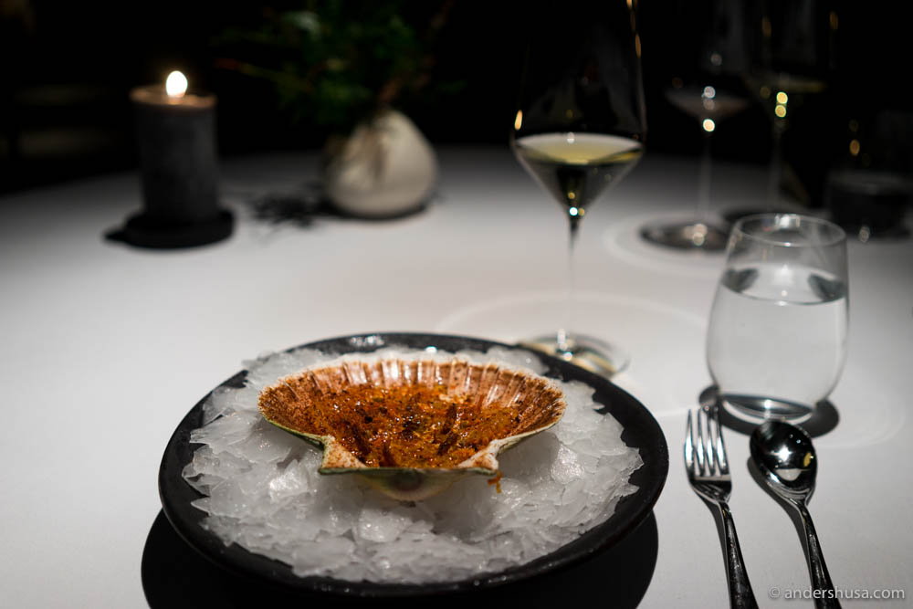 Scallop, pine, mussel, and hemp by Nicolai Nørregaard