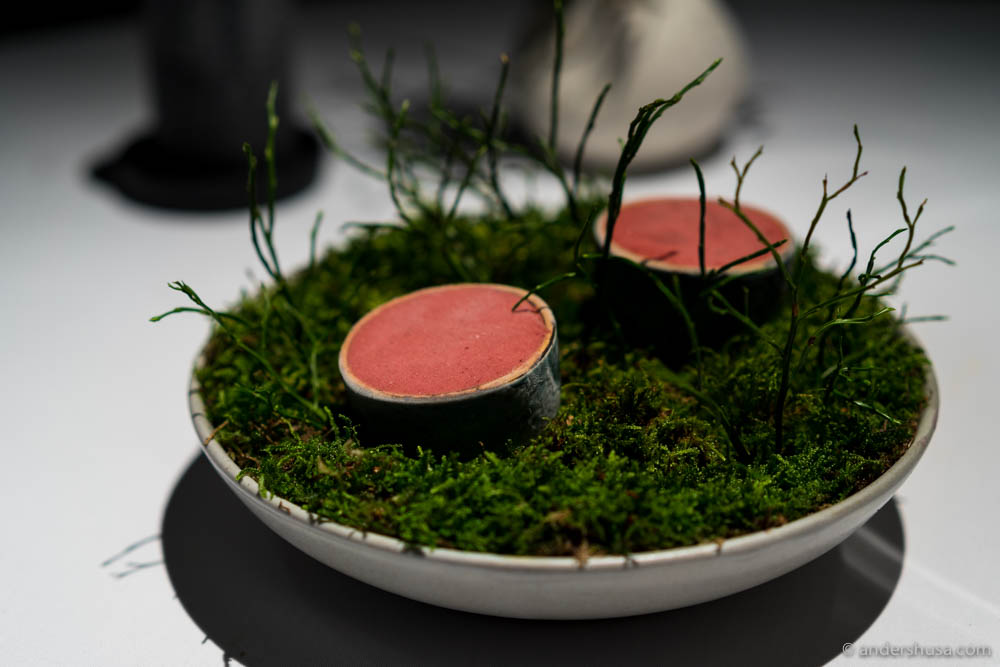 Fermented blueberries with caramelized goats milk and fragrant rhubarb root by Esben Holmboe Bang