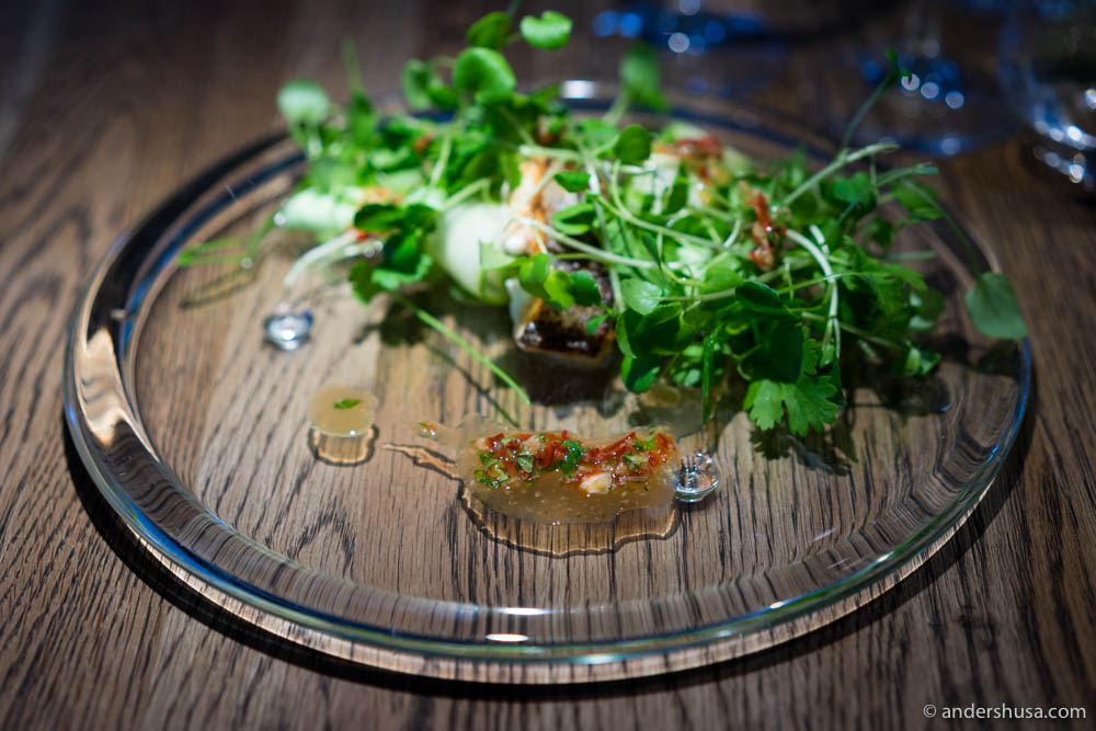Salad with spicy marinade cucumber & watercress mixed tableside