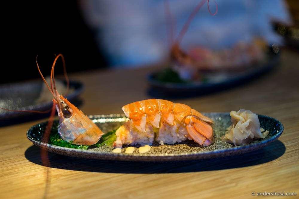Grilled langoustine nigiri