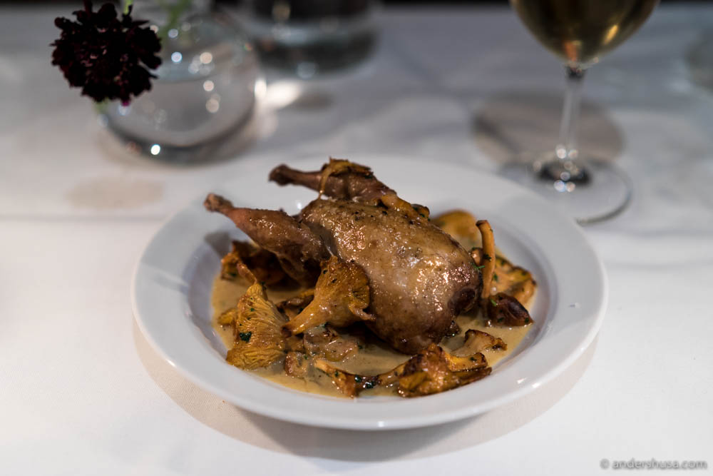 Quail, chanterelles, and Vin Jaune sauce