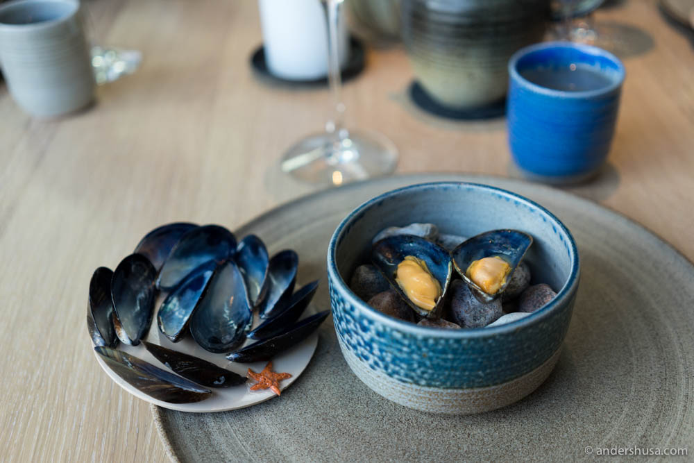Blue mussels with smoked butter