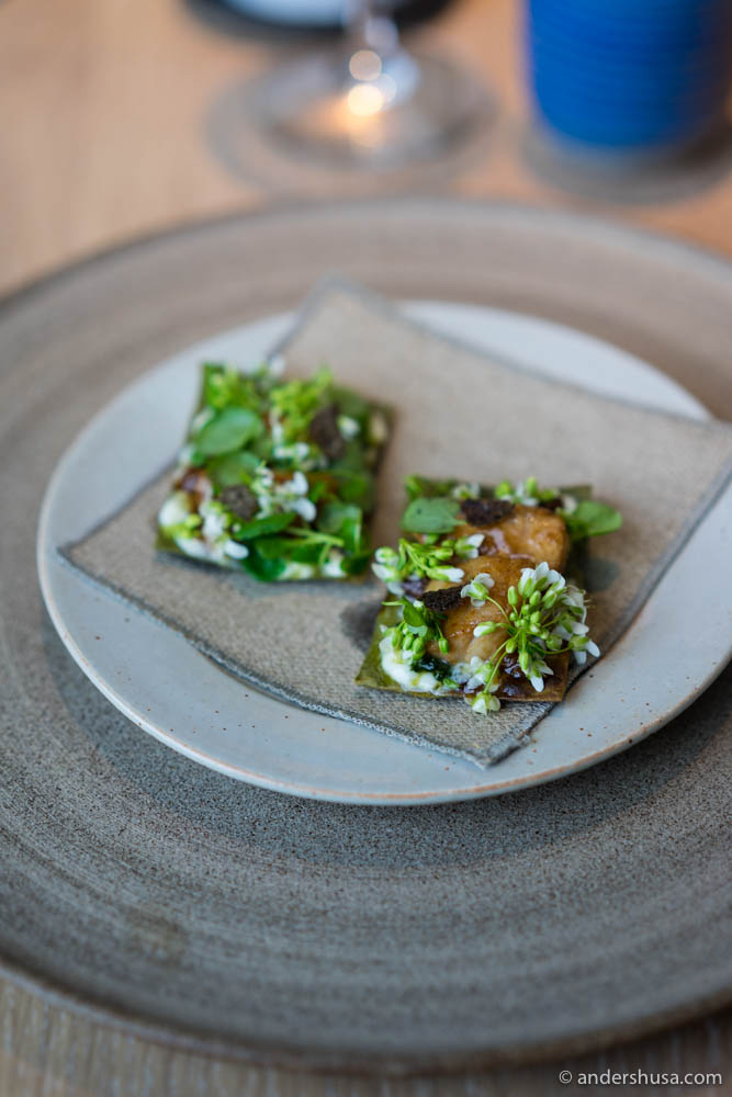 Grilled cod's cheek, glazed and served on a cracker with wasabi flowers from Iceland