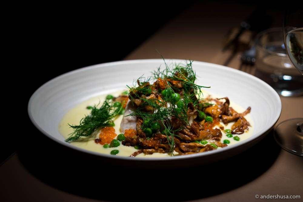Hake fish, chanterelles, potato purée & Sandefjord butter sauce