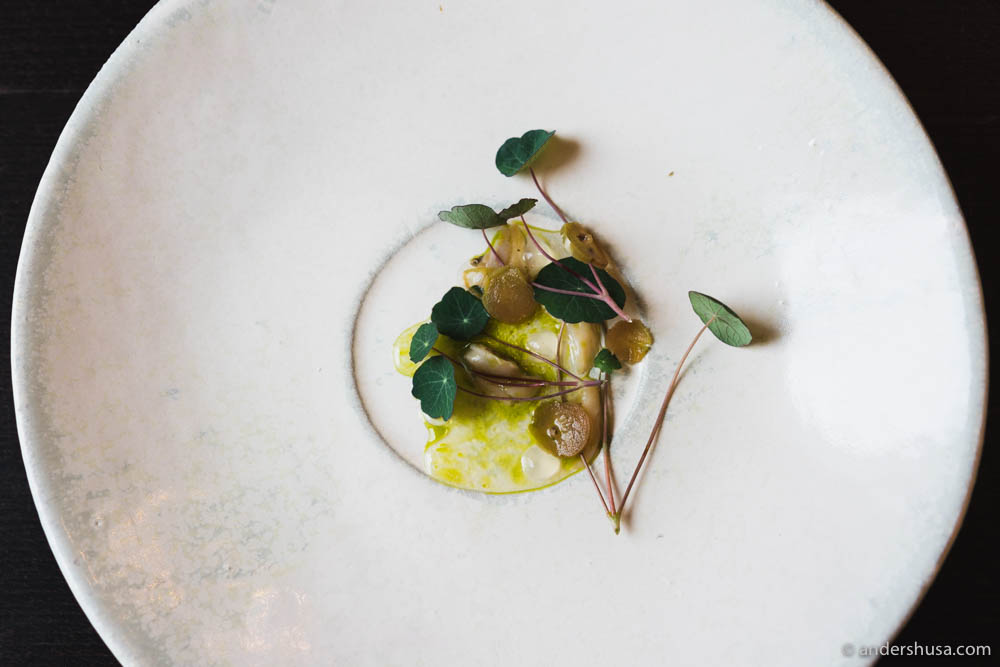 Soft-shell clams glazed in nasturtium oil with preserved gooseberries & seashore aster