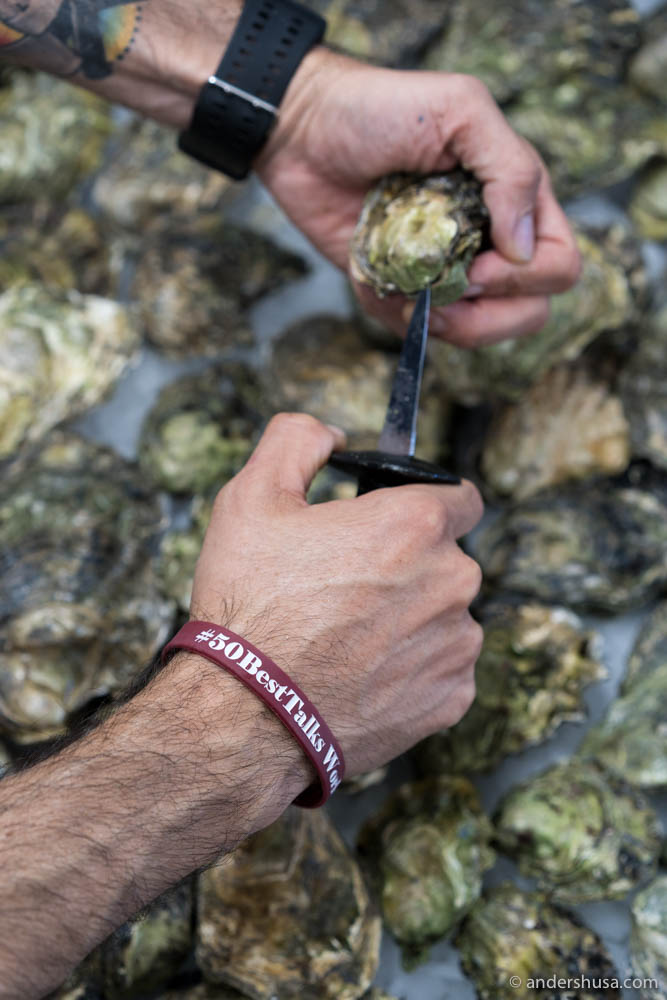 Rodrigo Belda shucking open fresh Norwegian oysters in Spain