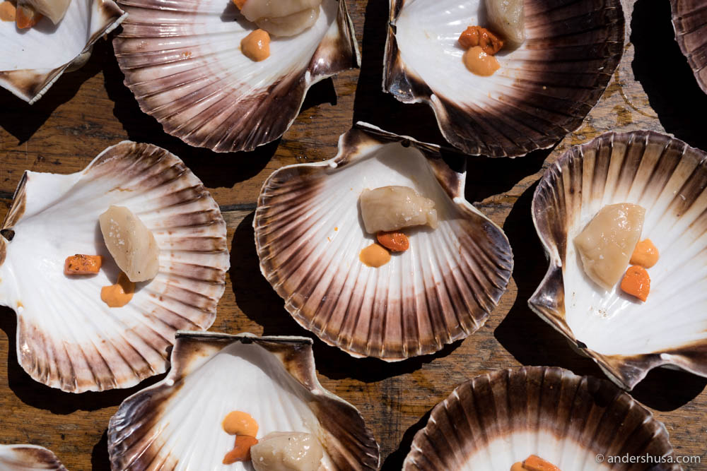 Norwegian scallops grilled by chef Pablo Vicari from the one-Michelin-starred restaurant Elkano